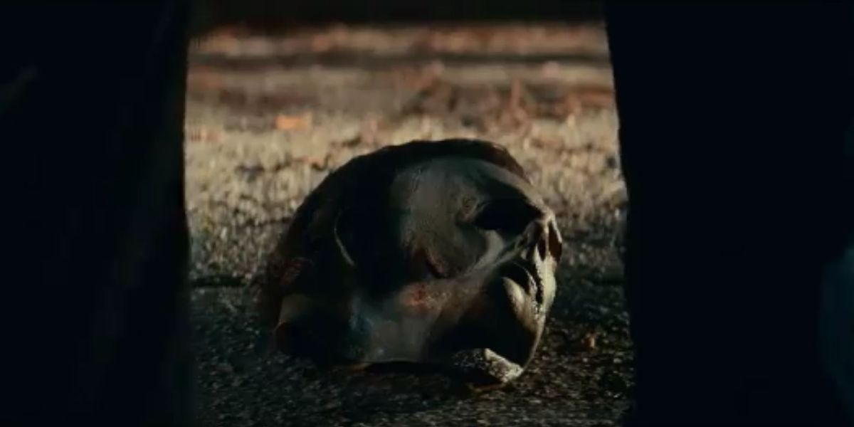 When Will The Trailer For Halloween 2020 Drop Halloween Kills,' filmed in Wilmington, drops second teaser trailer