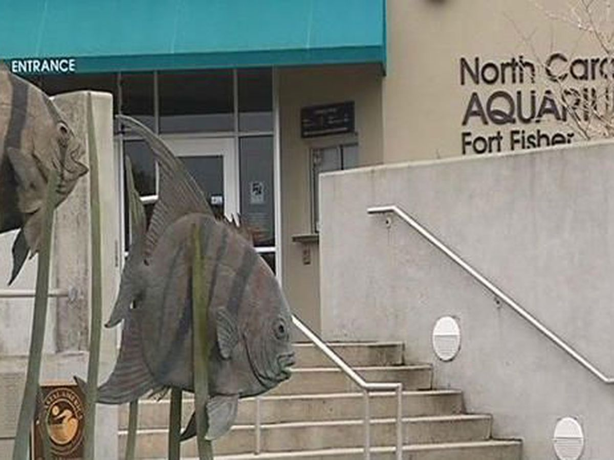 Fort Fisher aquarium back open after grappling with cooling issues