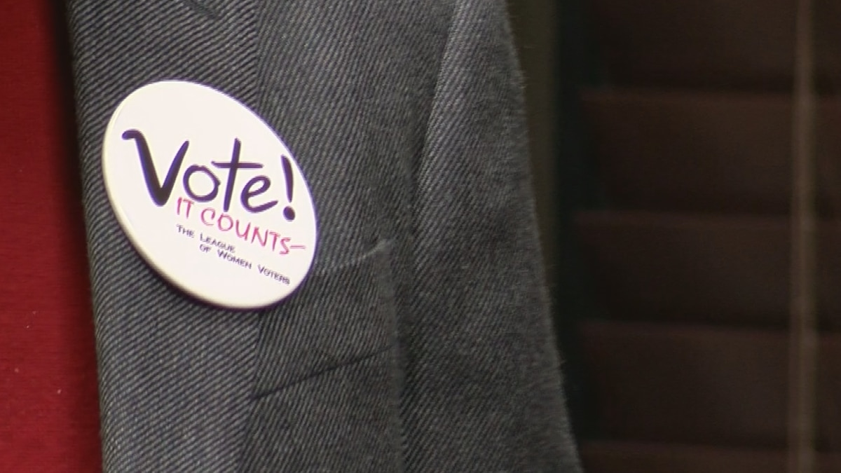 Candidates for local NC House and NC Senate seats take part in virtual forum