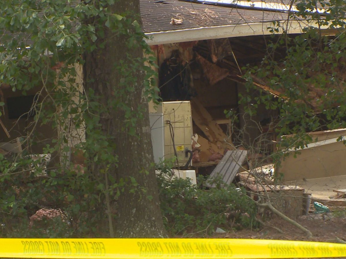 Elderly man, five animals killed in Duplin County home explosion