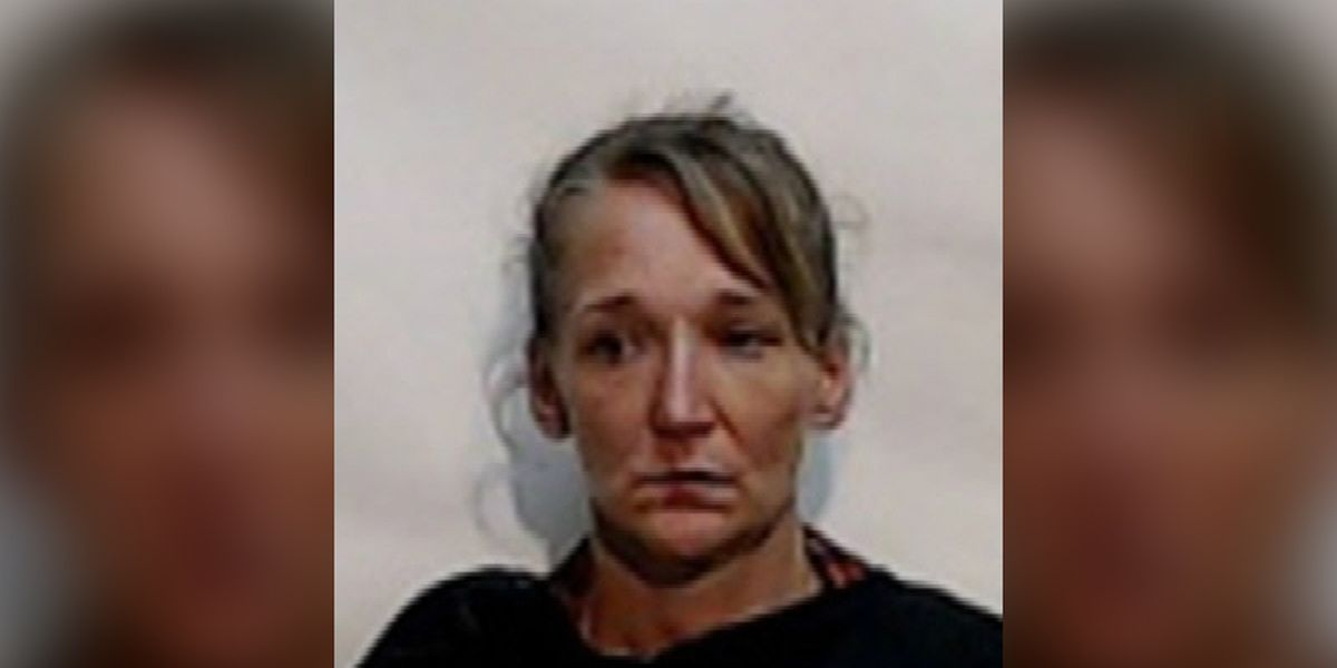 Delco woman accused of making purchases with stolen debit card