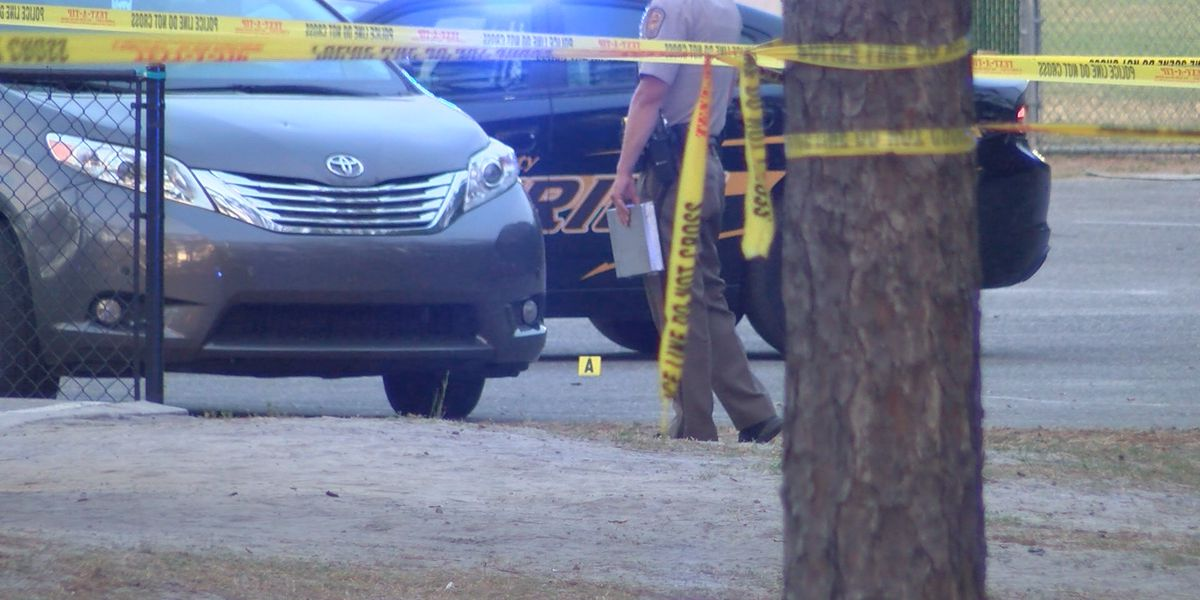 Night at the ballpark turns into chaos after shooting at Long Leaf Park
