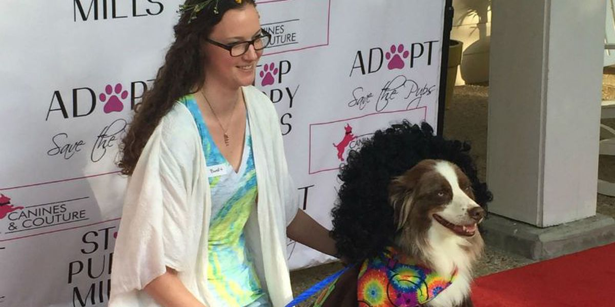 Canines strut their stuff to stop puppy mills in NC