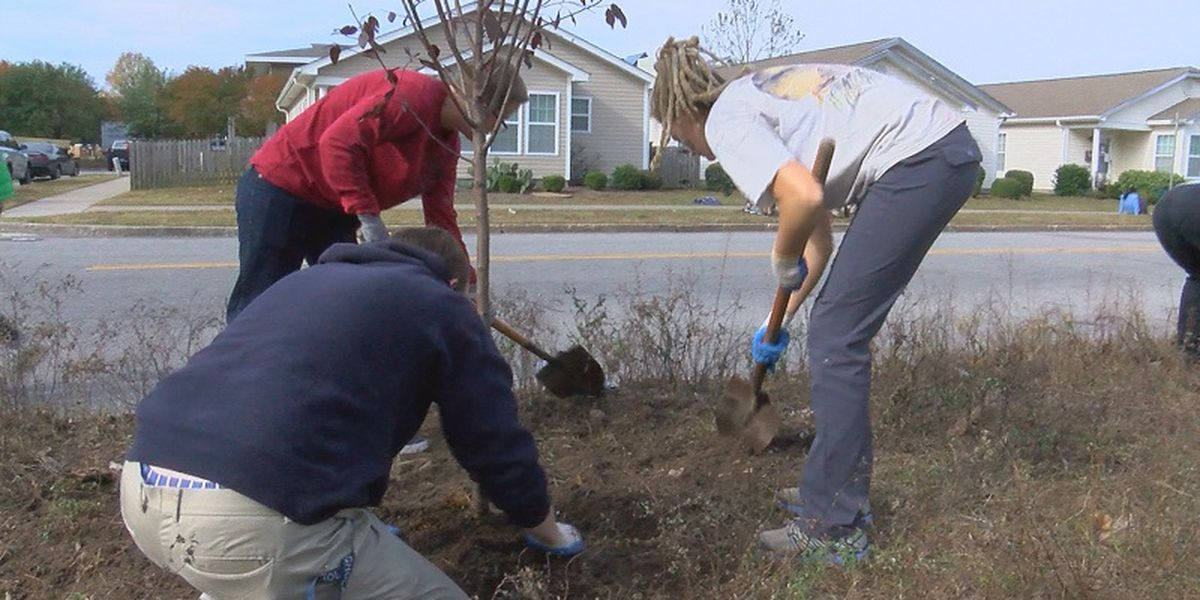 Dozens of volunteers plant trees around Wilmington