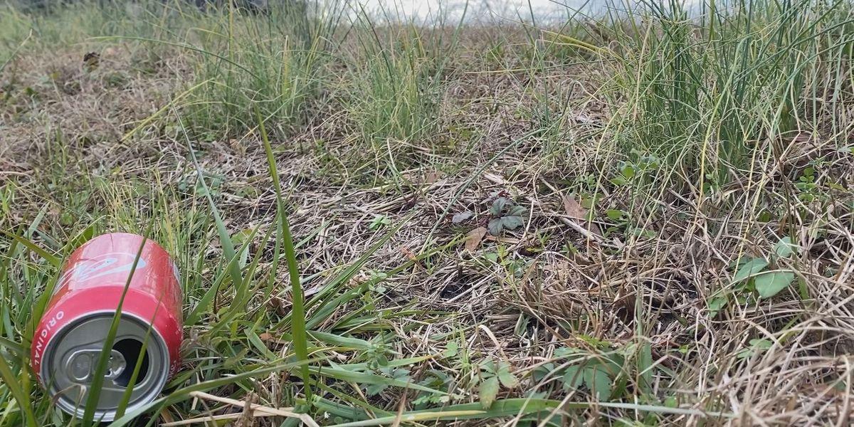 Bladen Co. requests state reinstate roadway prison clean-up program
