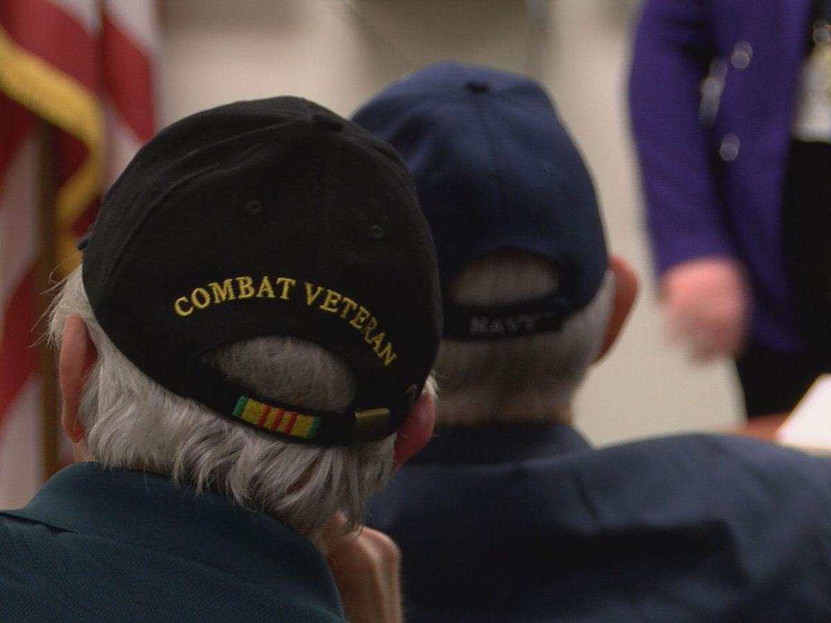 VA leadership hosts Wilmington town hall for feedback on healthcare