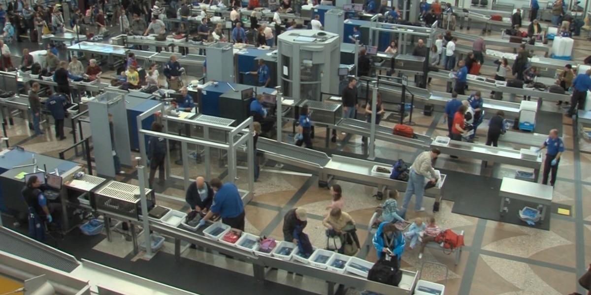 TSA seized record number of guns at US airports last year, report says