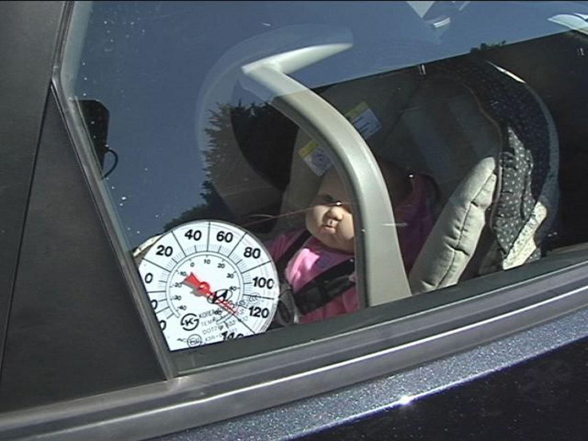 'Baby it's Hot Inside' event raises awareness about hot car deaths in Wrightsville Beach