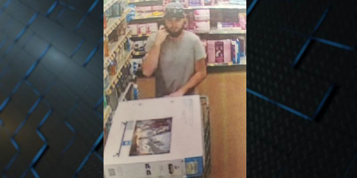 Leland police search for person accused of Walmart theft