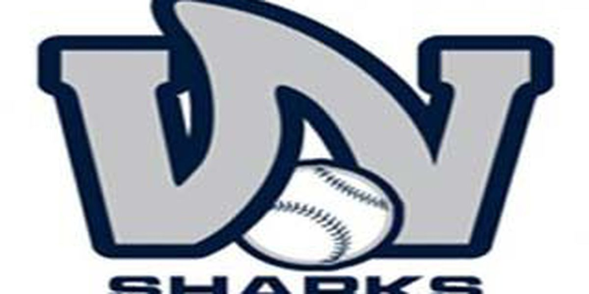 Jackson returns as Wilmington Sharks manager for 2019