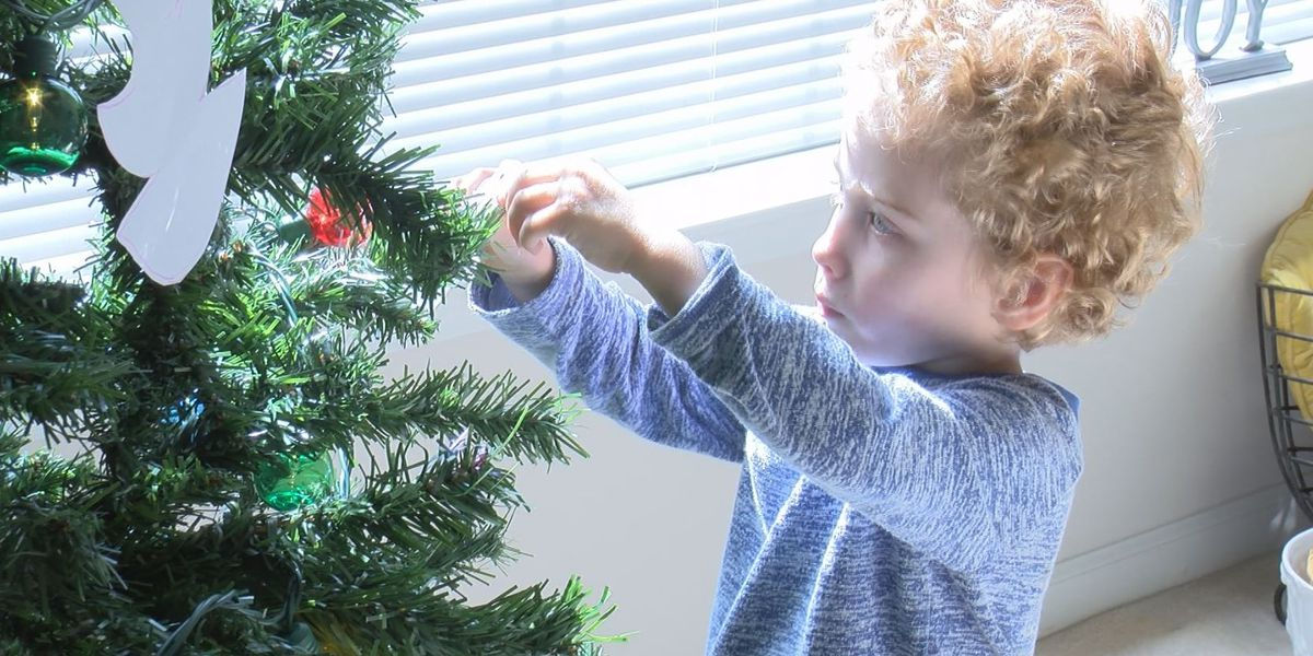 Wilmington family sets up Christmas tree to spread cheer during pandemic