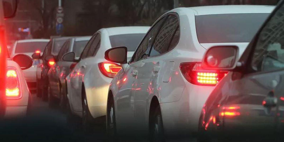 TRAFFIC ALERT: Tree removal will force road closure in Burgaw