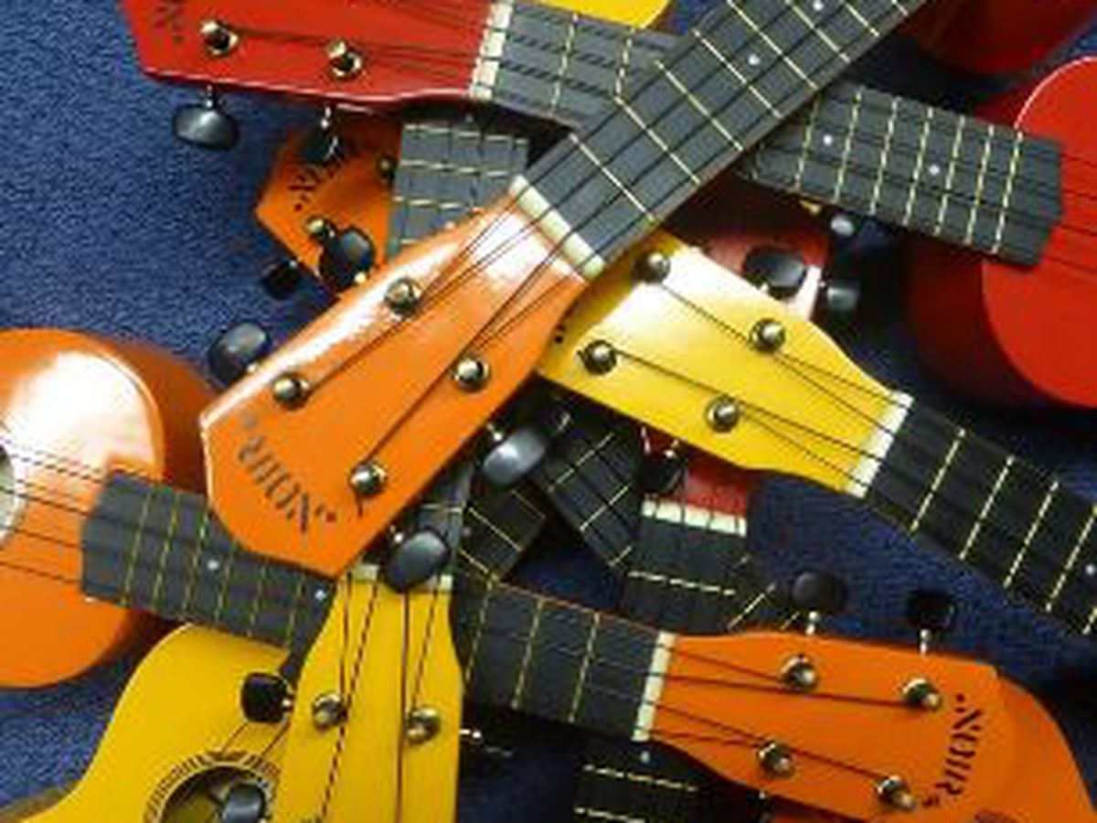 COMMUNITY CLASSROOM: A classroom set of ukuleles would be music to one teacher's ears