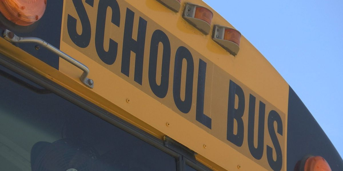 School bus drivers to wear many hats under COVID-19 restrictions