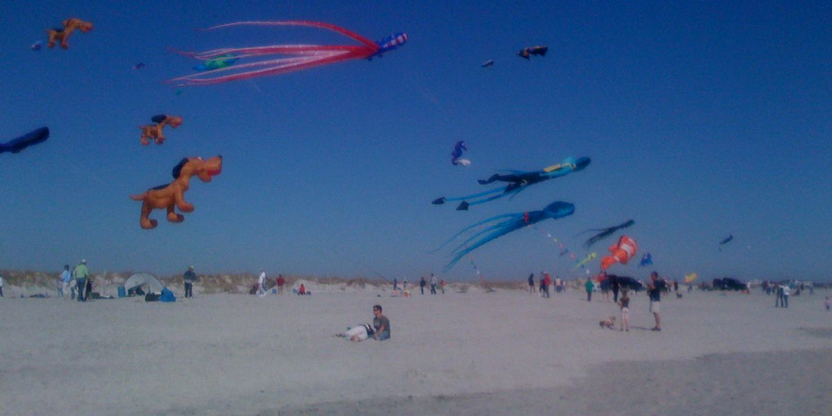Go fly a kite this weekend