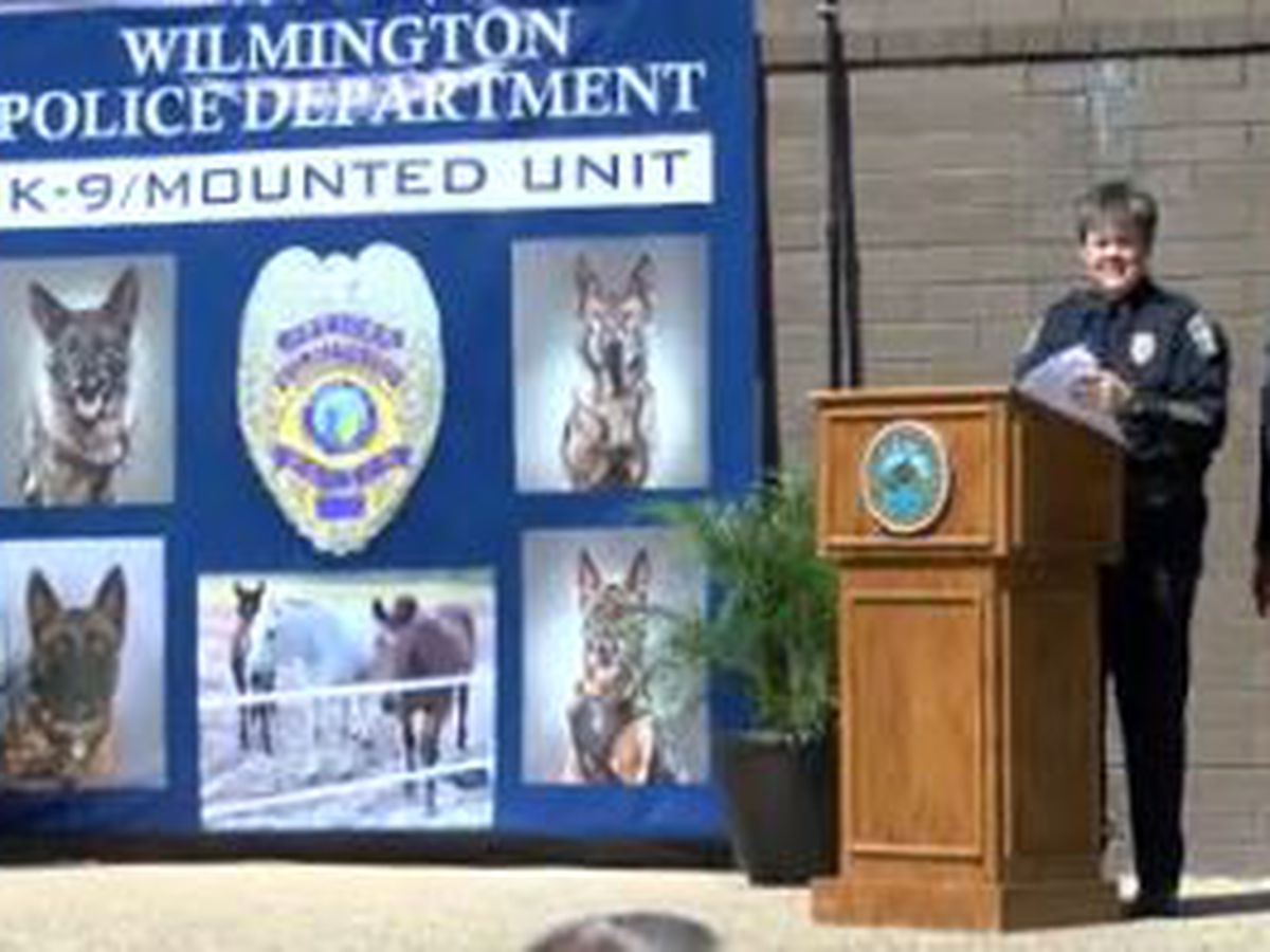 Wilmington Police Department celebrates its K-9, mounted units
