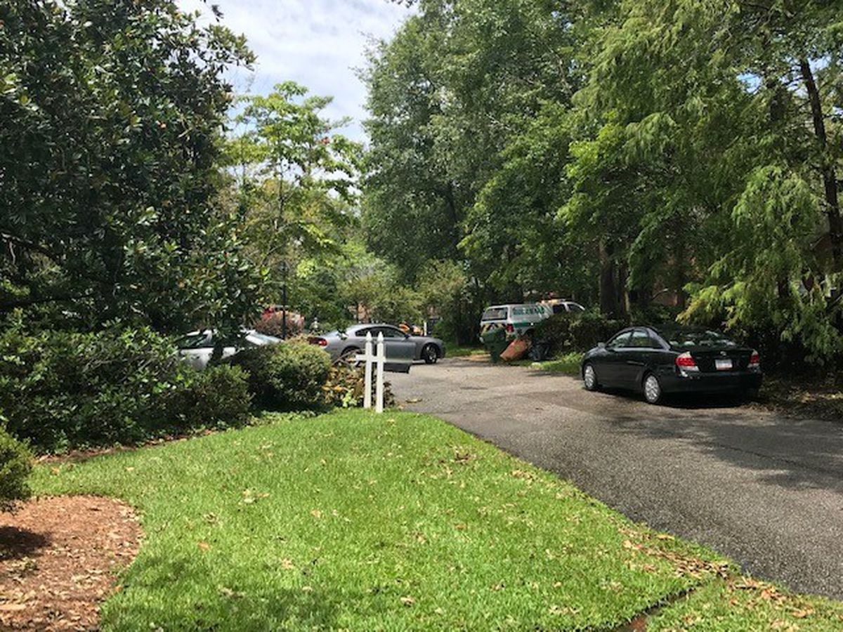 Two men killed by lightning strike while cutting tree limbs, Wilmington police say