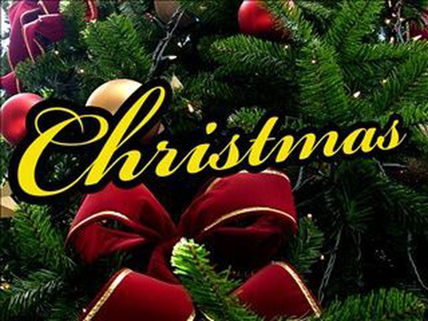 Christmas tree giveaway for low-income families