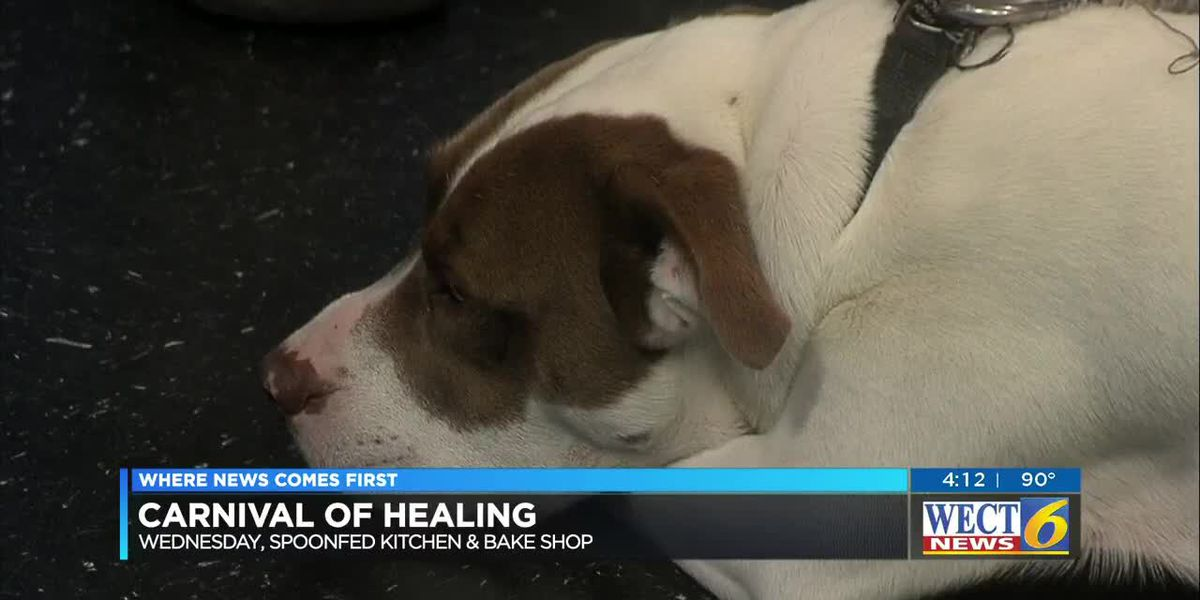 Fundraiser will help Survivors Best Friend pair sexual violence victims with shelter animals