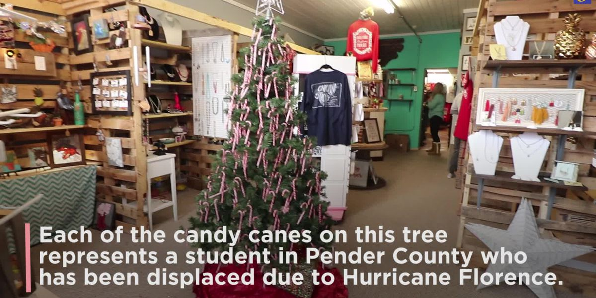 Candy cane tree in Burgaw shop will help give back to hurricane victims for the holidays