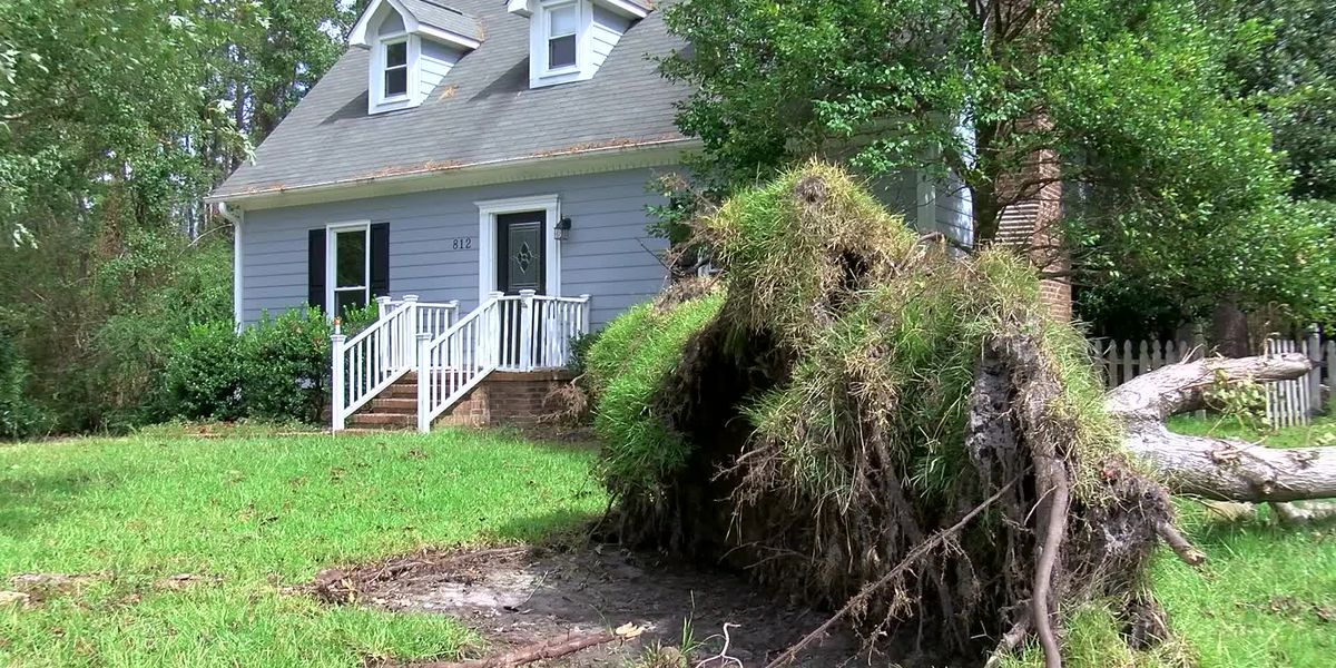 Wilmington City Council to vote on additional $8.5 million in Florence recovery funding