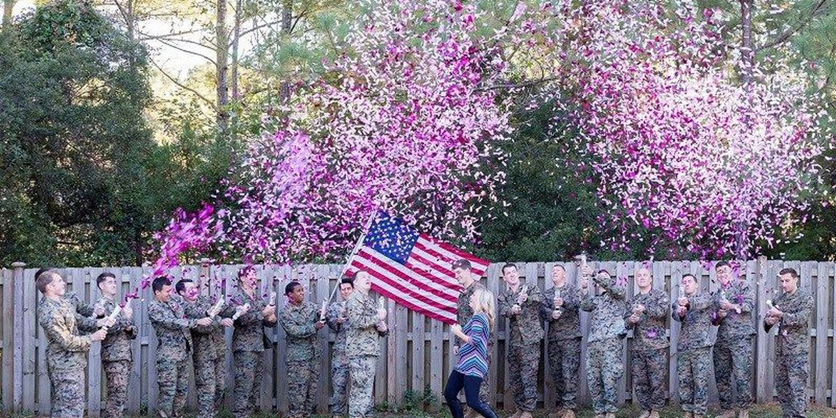 Baby gender reveal held for wife of Hampstead man killed in military plane crash