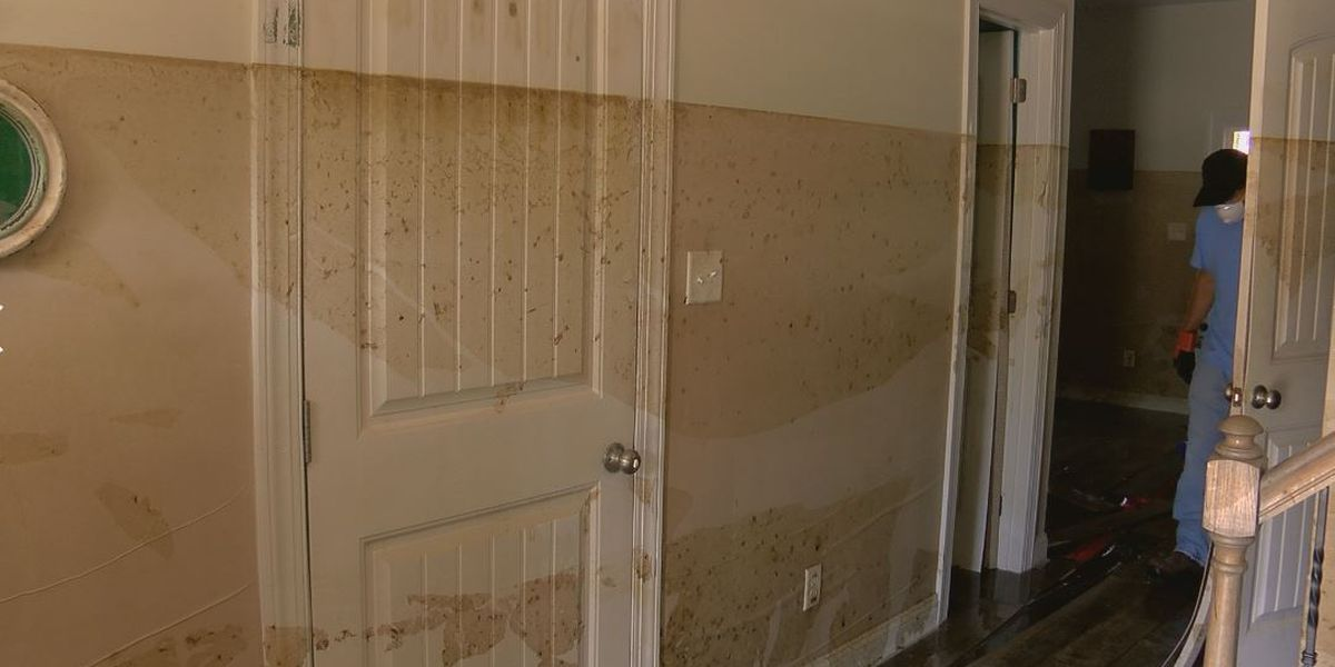 'It's so discouraging': Rocky Point family returns to flooded out home