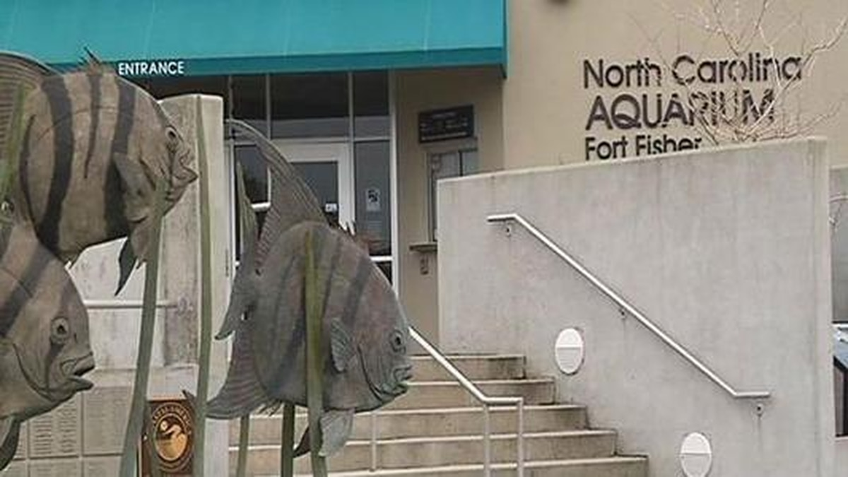Plans in place to improve Fort Fisher Aquarium