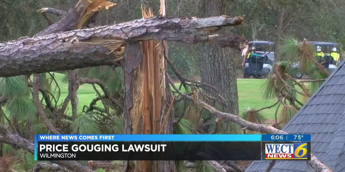 Attorney General files lawsuit against Florida tree-removal company for alleged price gouging