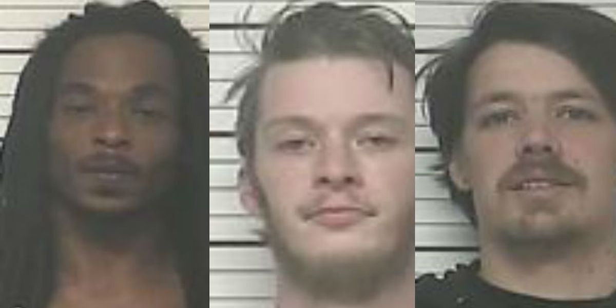 Several arrested on drug charges in Bladen County