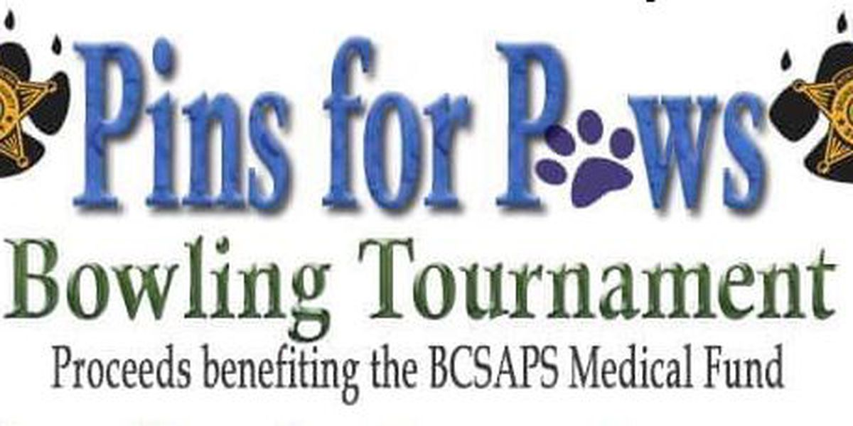 Pins for Paws bowling event set for Saturday