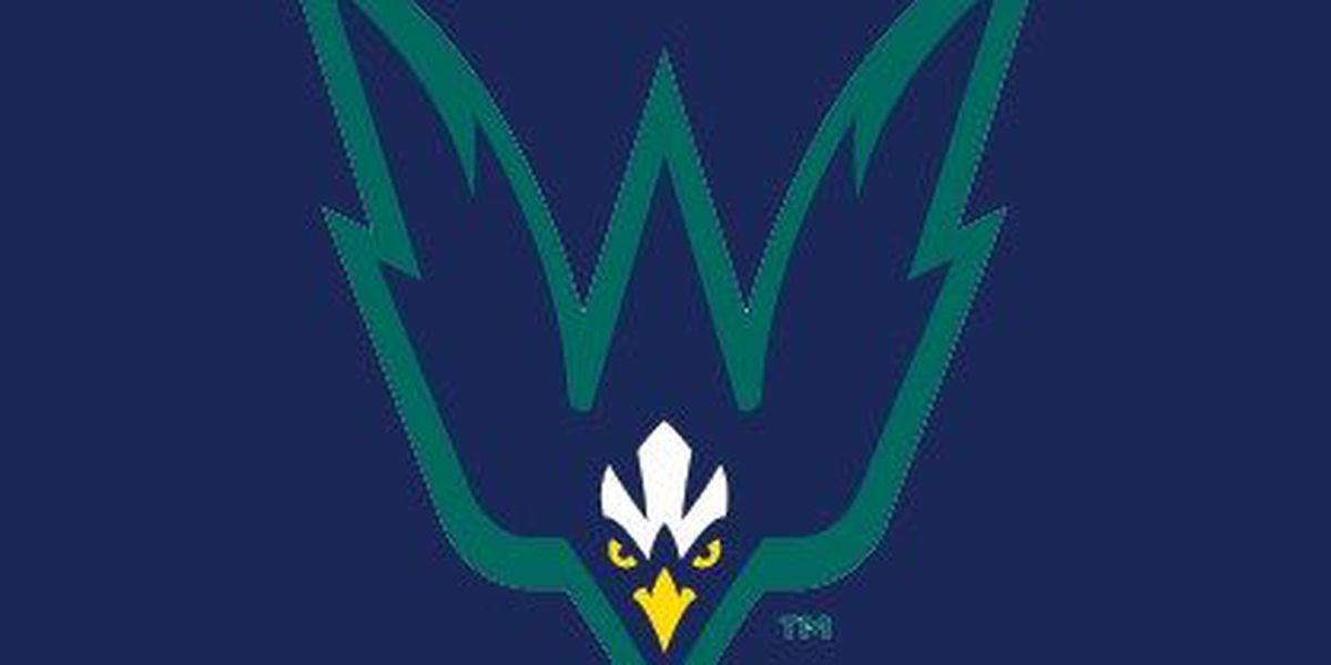 Late rally falls short for UNCW baseball