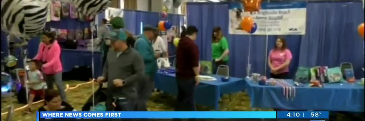 Event offers pet owners a place to scope out new products and services