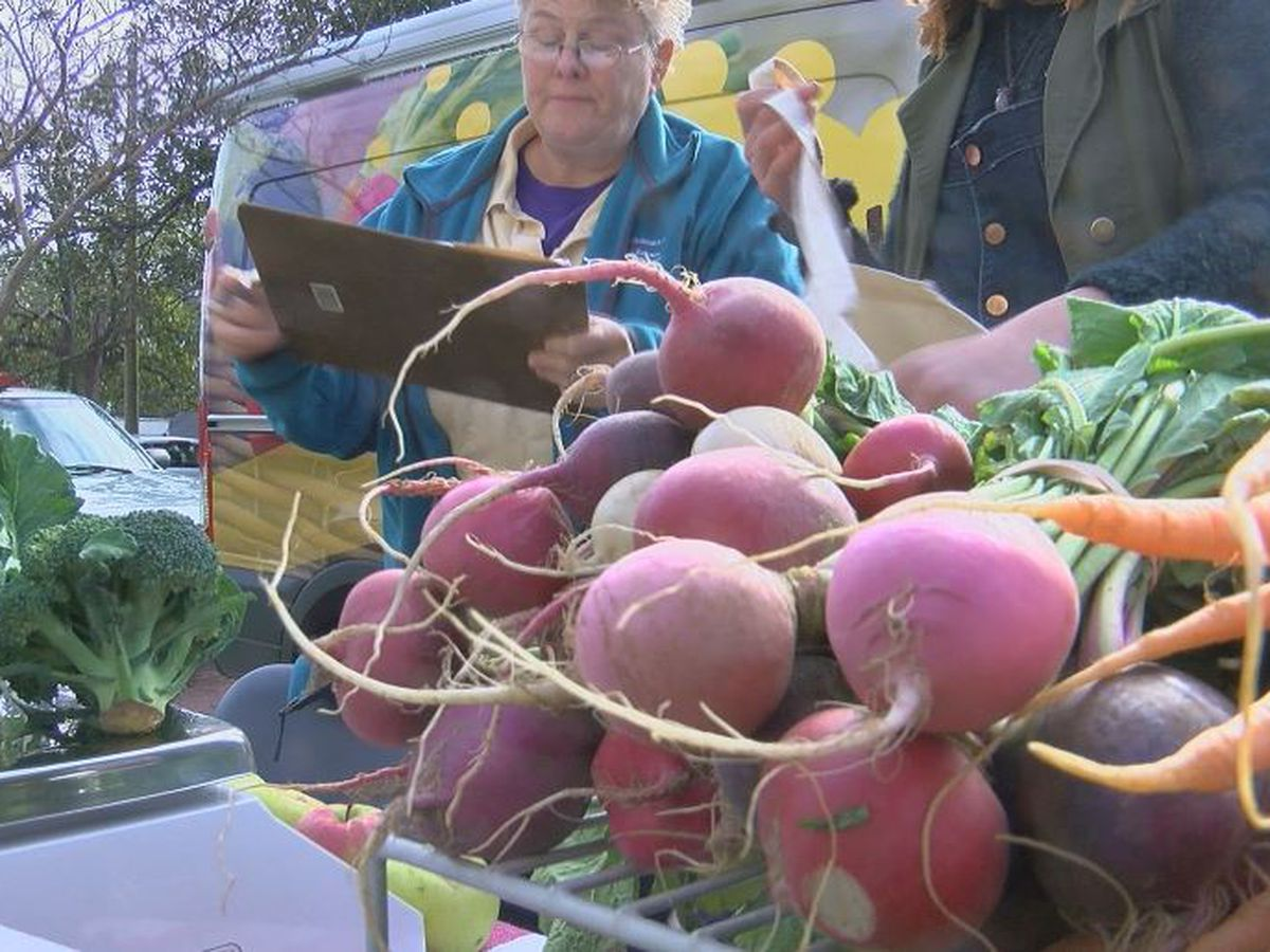Local Motive Mobile Farmers Market helping low income, SNAP families access fresh produce