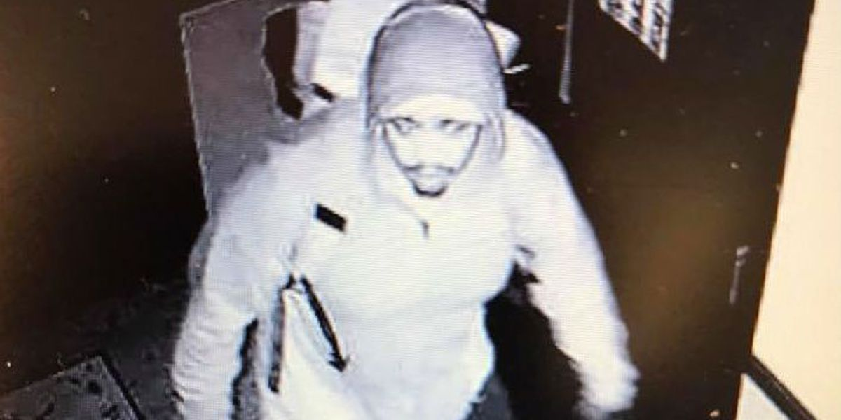 KNOW THIS GUY? WPD needs help ID'ing suspect who broke into 4 businesses