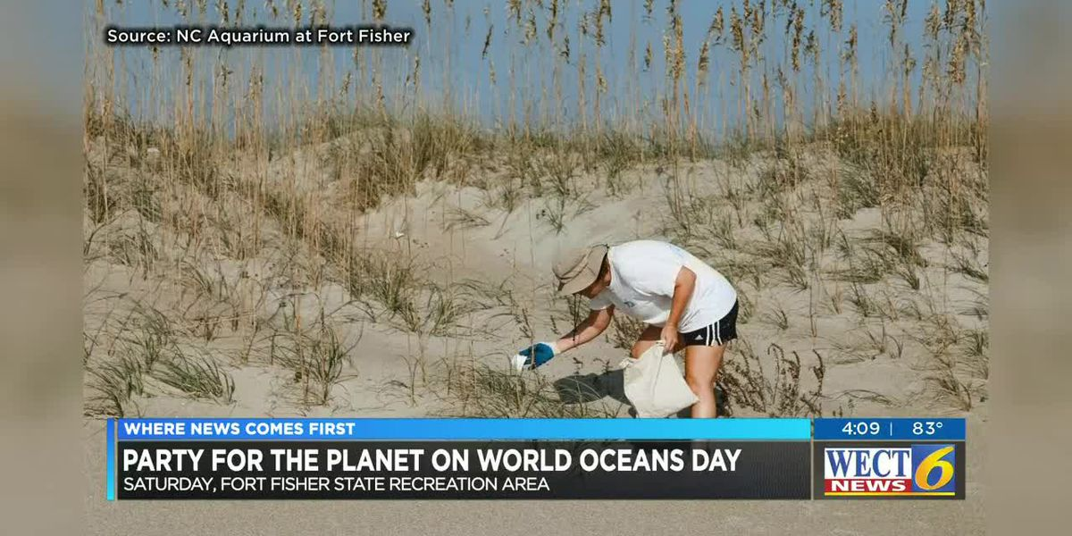 Plant sea oats along the coast, clean the beaches on World Oceans Day