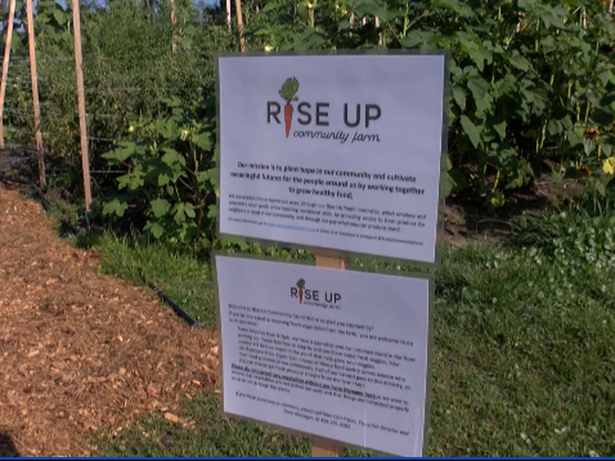 Those in need 'pay what you can' at this Wilmington farm stand