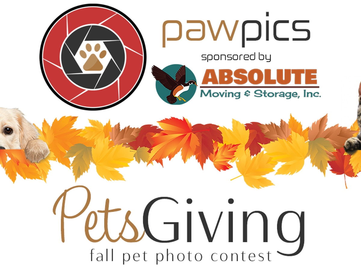 PAW PICS: Petsgiving pet photo contest