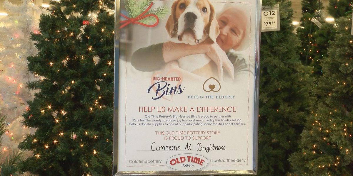 Fill up 'Big-Hearted Bins' for seniors, shelter pets this holiday season