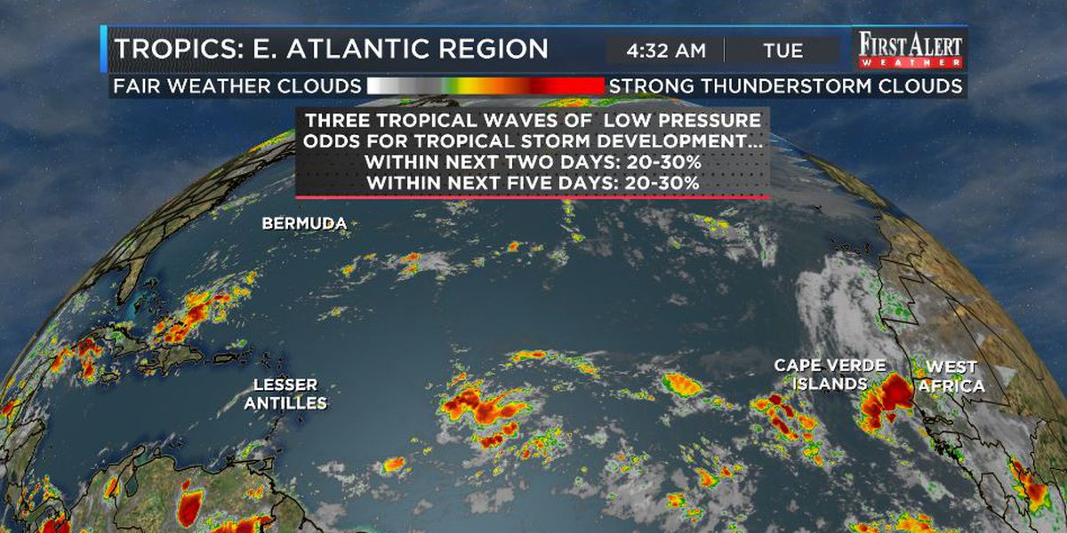 Home - WECT TV6: News and Weather for Wilmington, NC