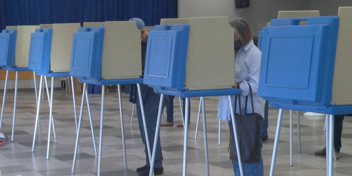 NC Board of Elections director says March 2022 Primary elections should be delayed