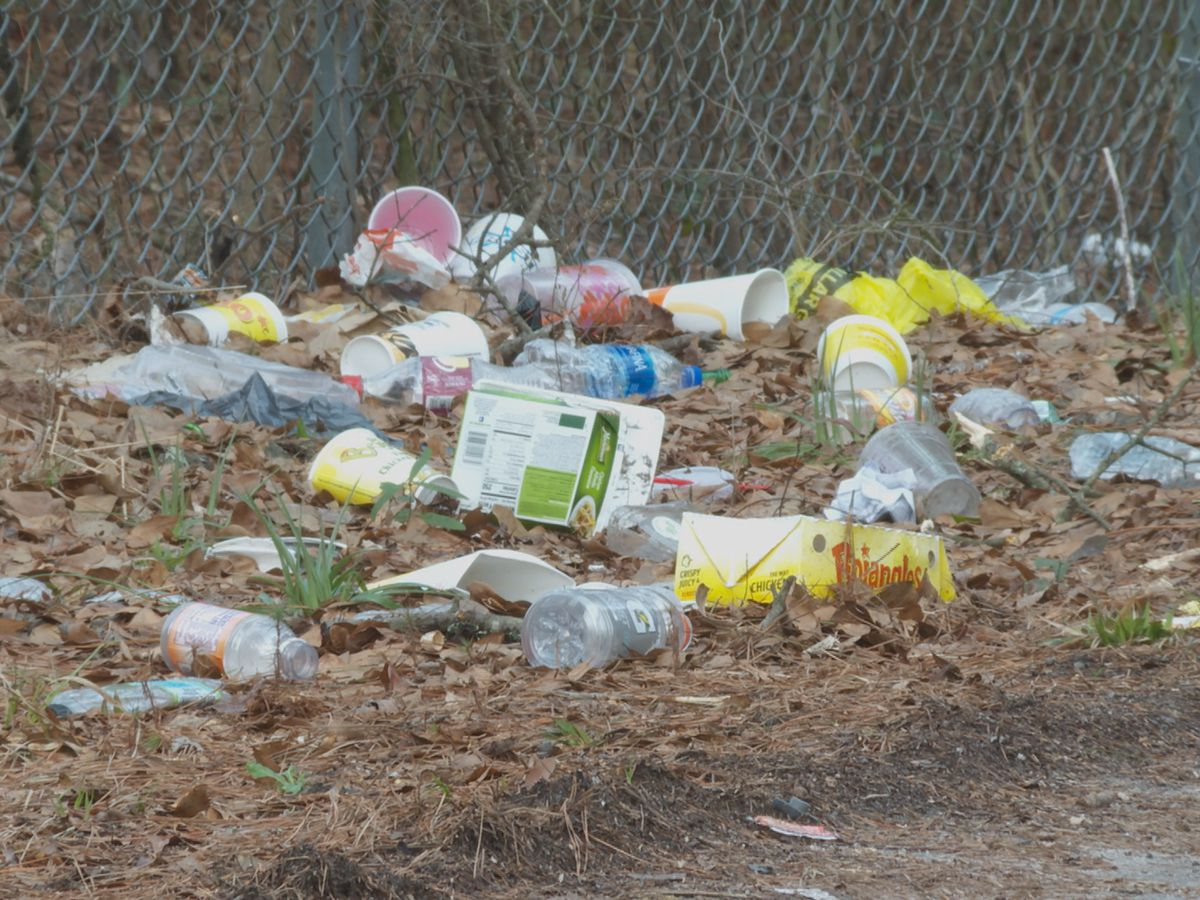 Lock up Litter program aims to keep roadways clean in Brunswick County