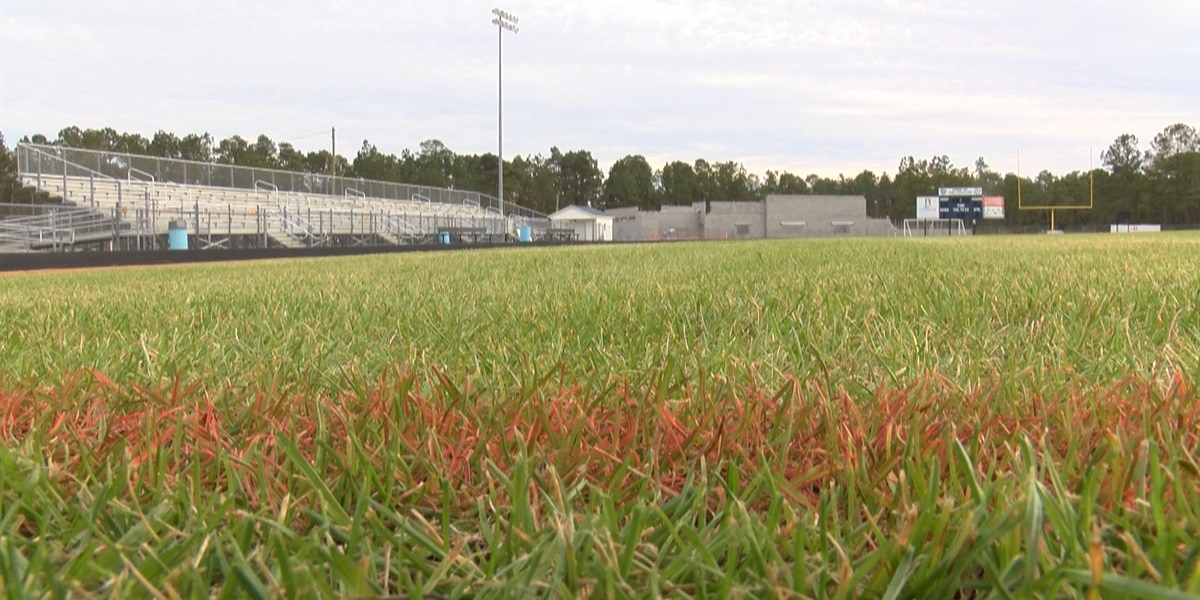 Artificial turf proposal at Brunswick County's high school stadiums excites parents, coaches