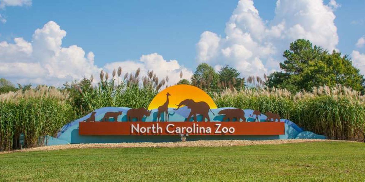 North Carolina Zoo set to reopen on Monday