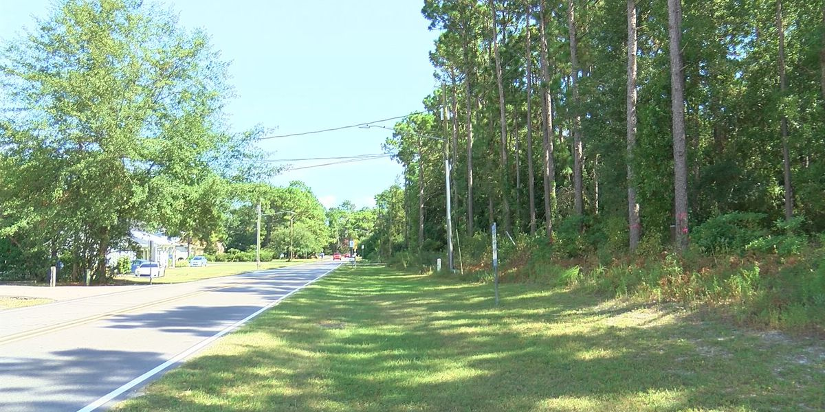 Wilmington Planning Commission approves College Acres townhome development