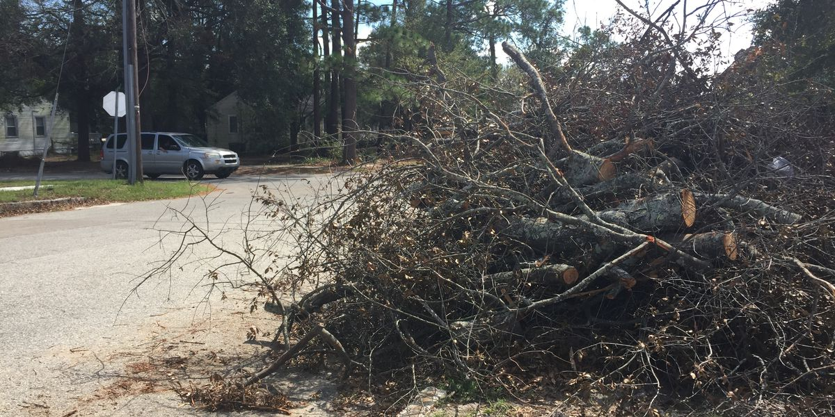 Crews completing final pass for Leland storm debris pickup