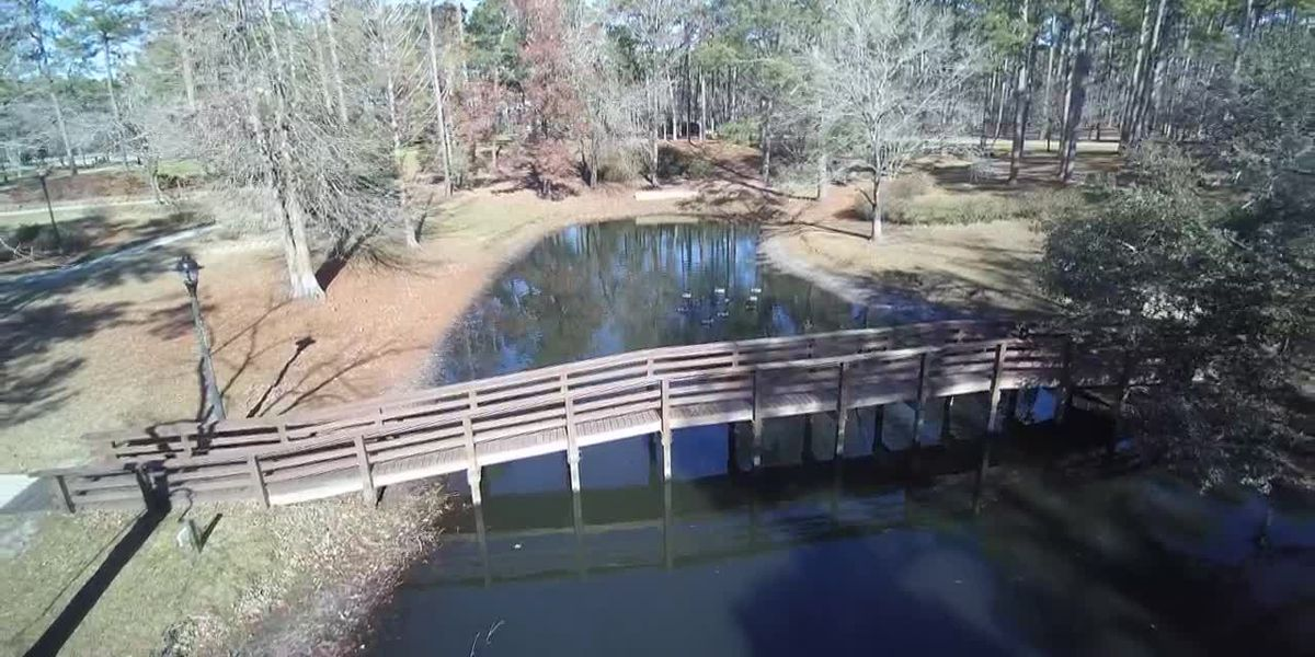 SKY TRACKER: A look over the pond at Hugh MacRae Park
