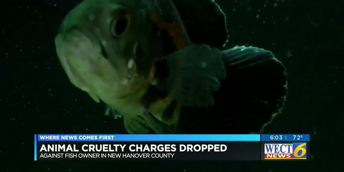 Off the hook: Prosecutors dismiss charges against man accused of abandoning his pet fish