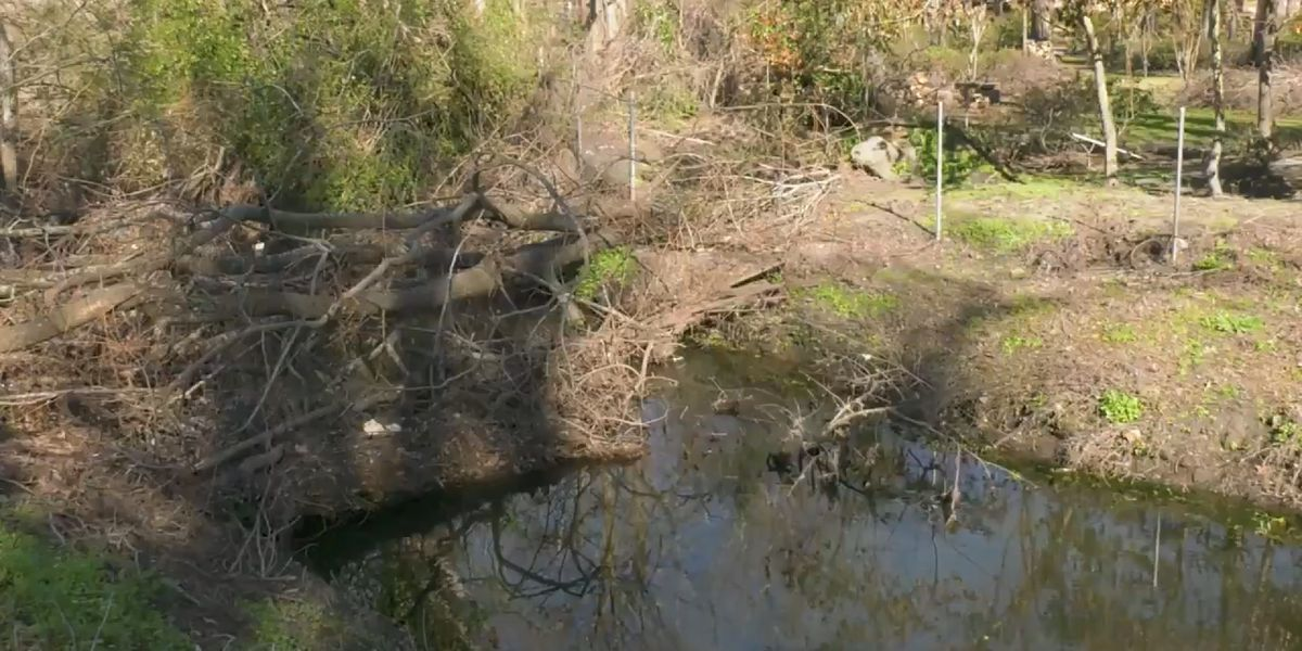 New Hanover awarded $4.3M to remove Florence-related debris from area creeks