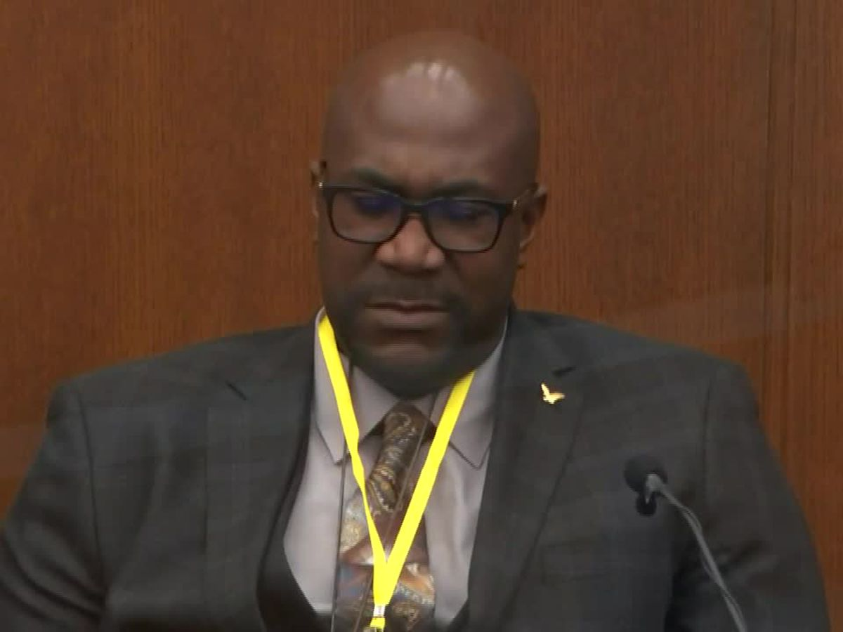 Expert: Chauvin did not take actions of 'reasonable officer'
